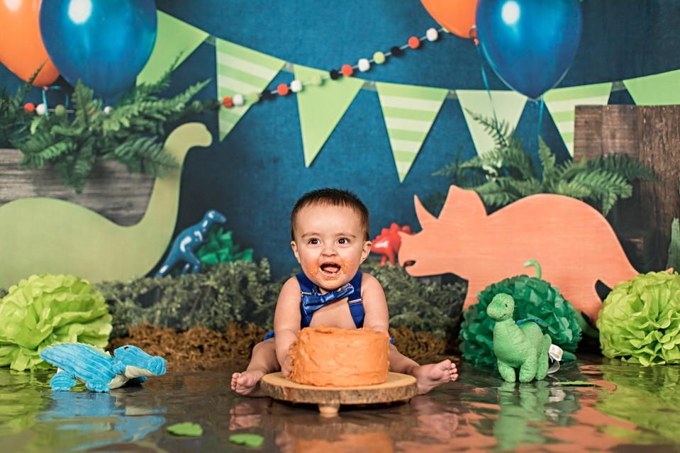 Dino Cake Smash_Christopher-164.jpg