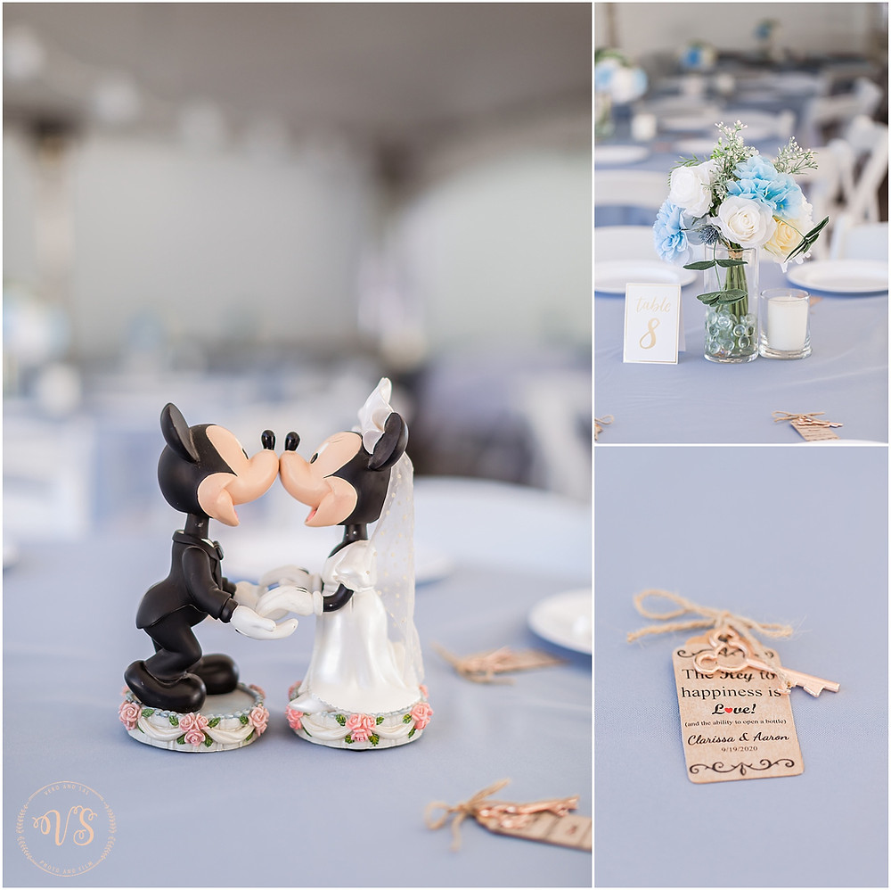 A_Disney_Fairy_Tale_Burbank_IL_Wedding_Photographer_Wedding_photography_Joliet_Wedding_Photographer