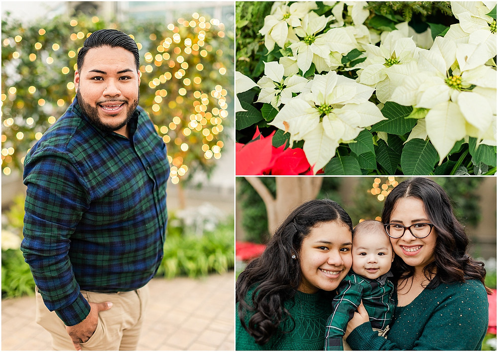 christmas family photos bird heaven green house joliet family photographer family mini sessions