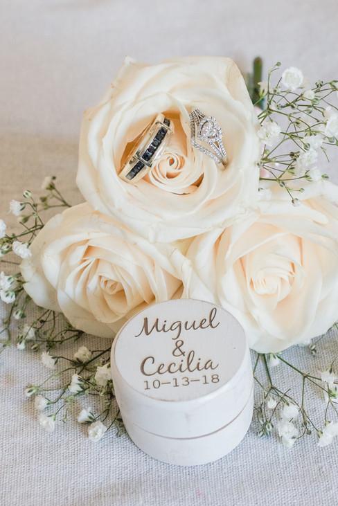 Cecilia and Miguel Chicago Wedding-047.j
