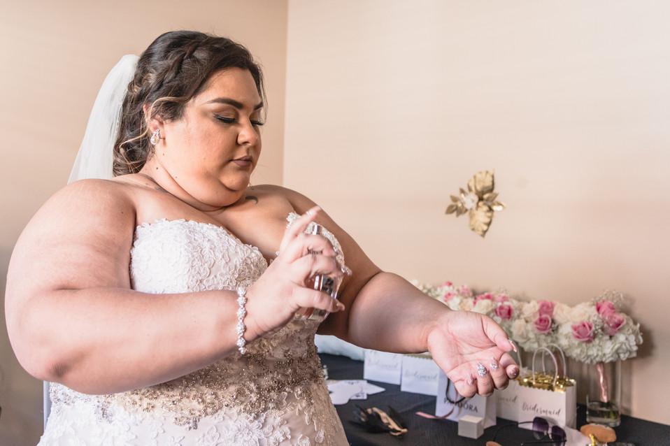Cecilia and Miguel Chicago Wedding-216.j