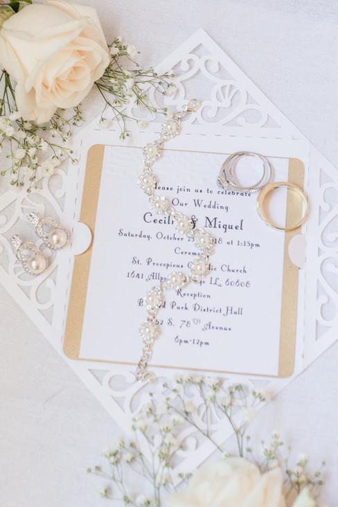 Cecilia and Miguel Chicago Wedding-018.j