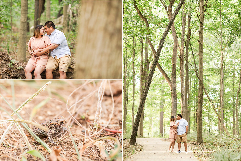 bird-haven-greenhouse-joliet-il-engagement-session-engagement-photographer-joliet-wedding-photographer