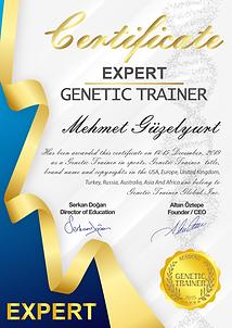 3. EXPERT.png