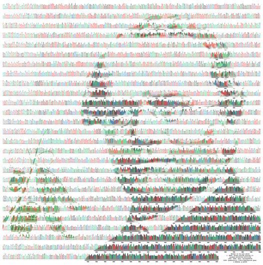 Mendel in his pea genes