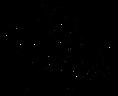 Logo CPEF noir.png