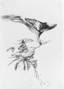 Untitled, 29.7 x 21.0 cm, graphite on paper, 2020