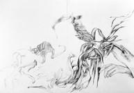 Untitled, 29.7 x 42.0 cm, graphite on paper, 2020