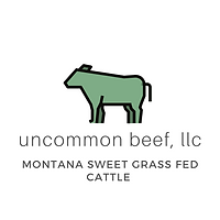 [Original size] uncommon beef llc logo (