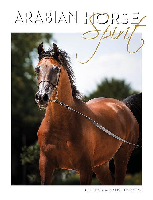 Arabian Horse Spirit nº10