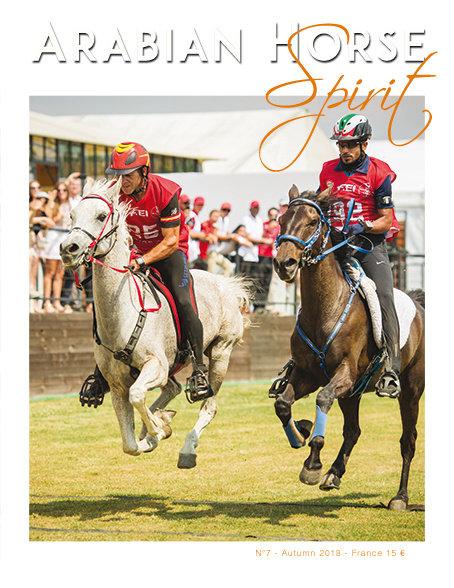 Arabian Horse Spirit nº7