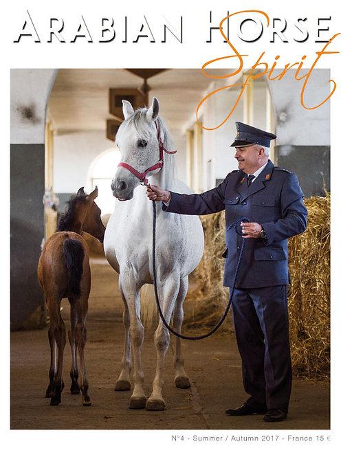 Arabian Horse Spirit nº4