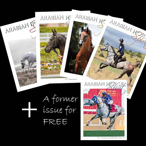 Abonnement 4 numéros / Subscription 4 issues