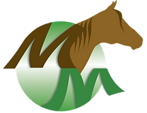 LOGO M MEZY (4) png.png