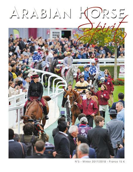 Arabian Horse Spirit nº5