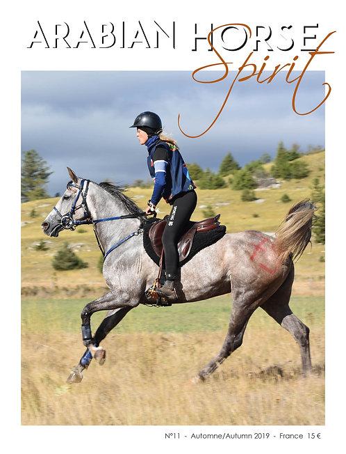 Arabian Horse Spirit nº11