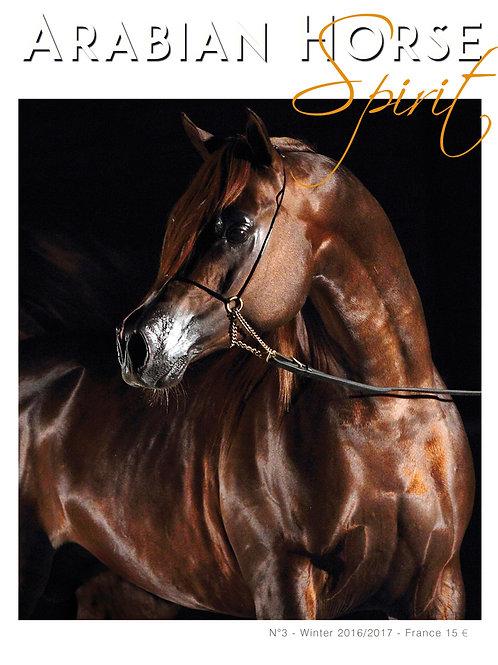 Arabian Horse Spirit nº3