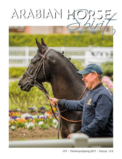 Arabian Horse Spirit nº9