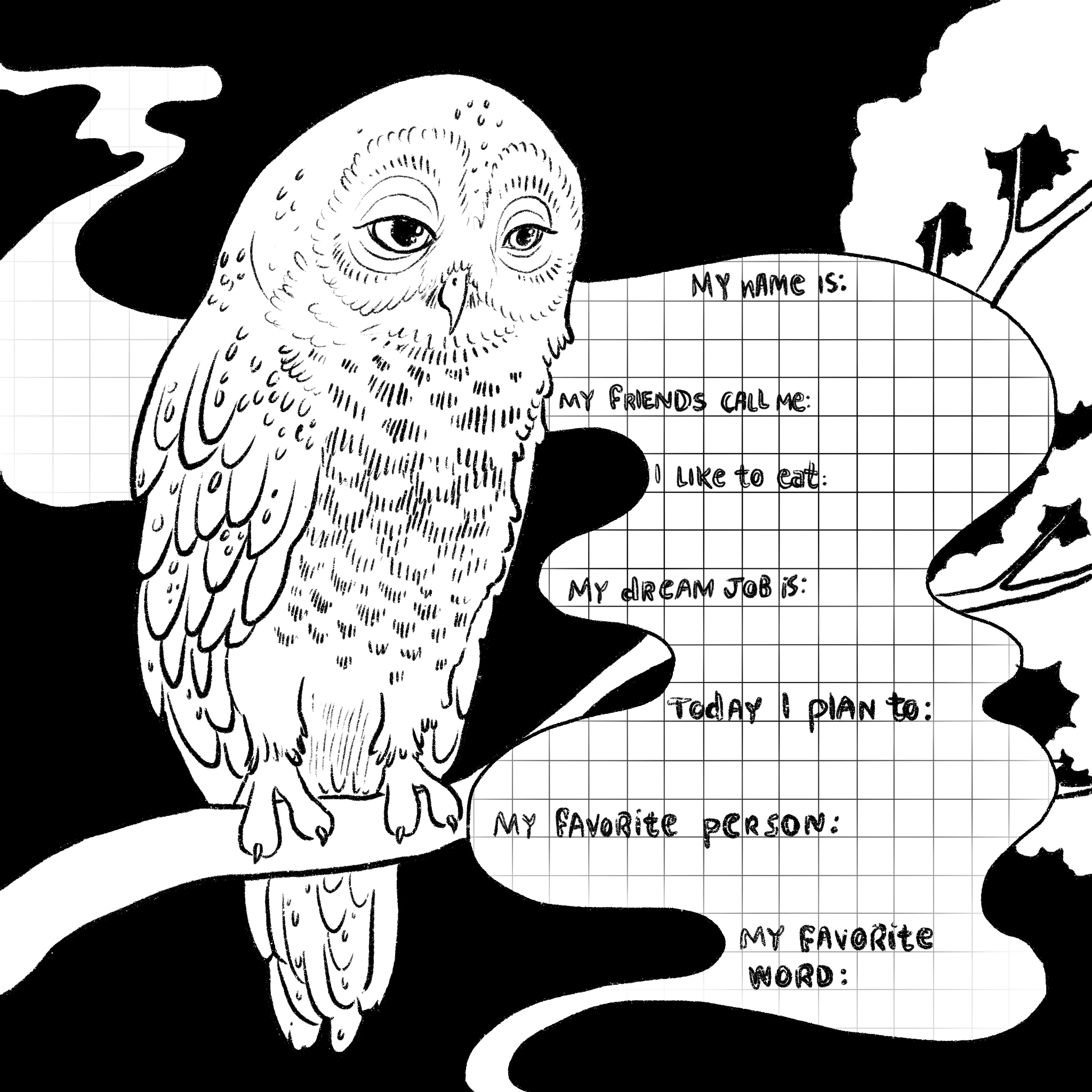 Owl Thoughts