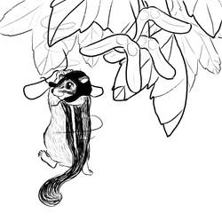 Maple Gliding