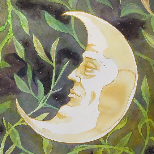 8x10 PRINT - La Lune