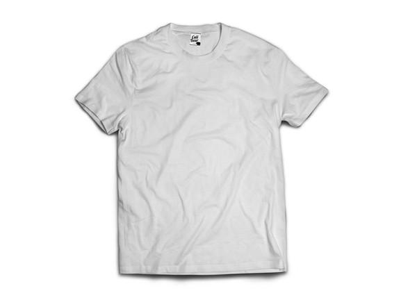 calibear חולצת טי שירט לבנה