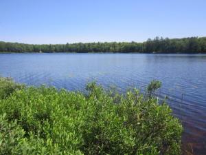 Carpenter Lake 3.jpg