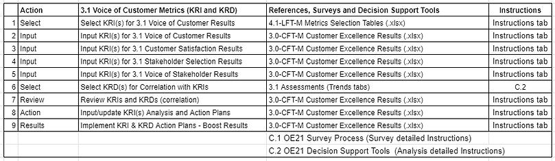 A_3.1 voice fo customer Metrics table.PN