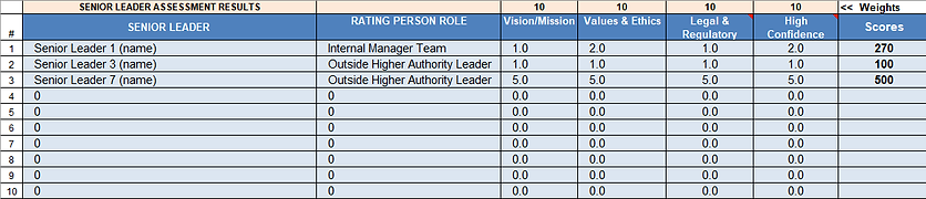 1.1 Senior Leader Assessment Matrix.png