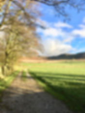 lane to Bolton Priory 3.jpg