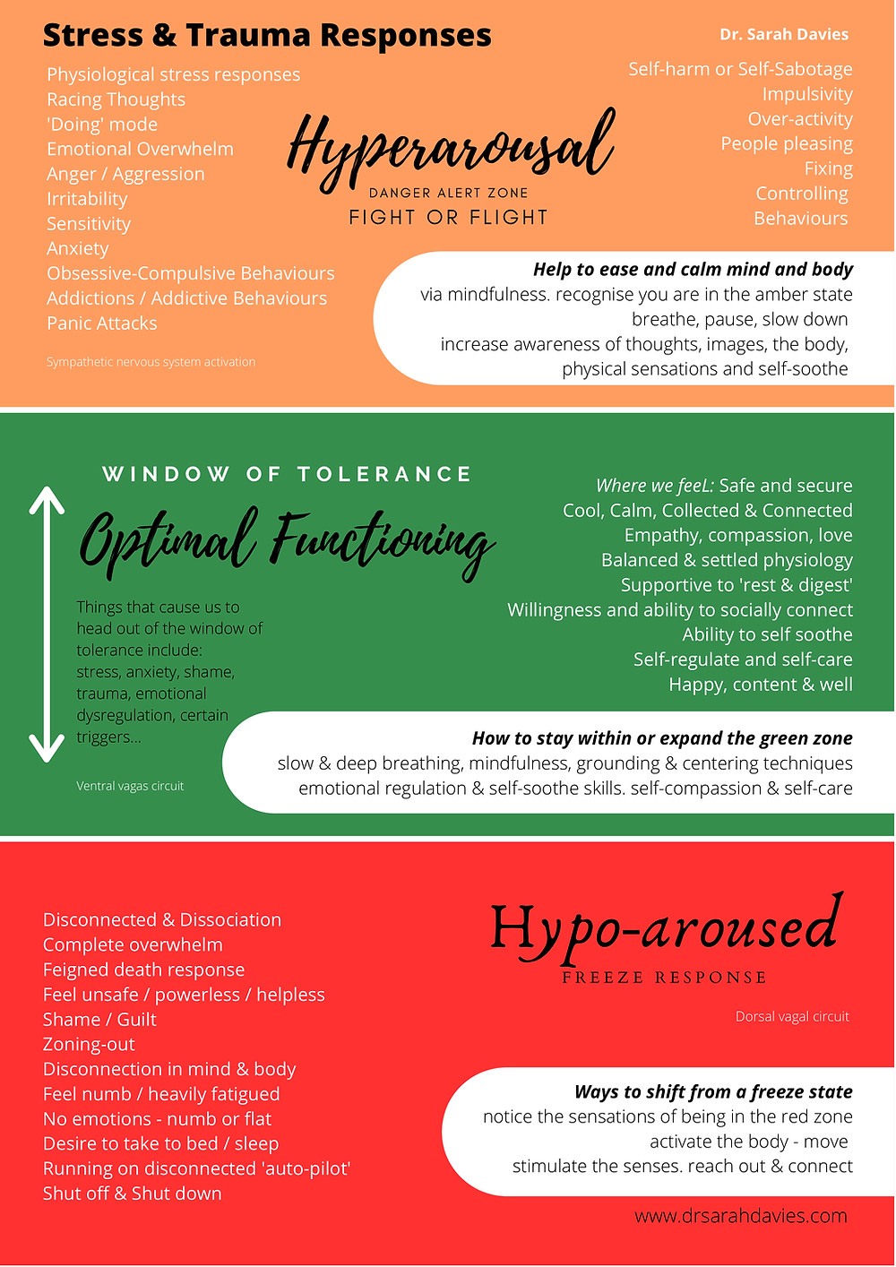What is the Window of Tolerance - stress and trauma response explained