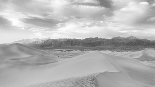 LINES IN THE SAND B/W