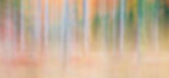 Pharoah Wilderness Abstract No. 5