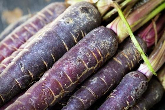 Purple Carrots Boast Ancient Roots