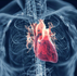 DOES HIGH CHOLESTEROL CAUSE HEART ATTACKS and STROKES?