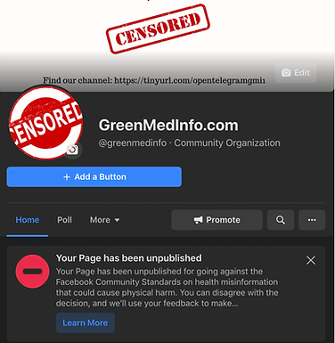 Facebook Deletes Greenmedinfo.com's Page with Half a Million Followers