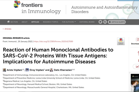 SPIKE ANTIBODY ATTACKS 28 DIFFERENT HUMAN TISSUES