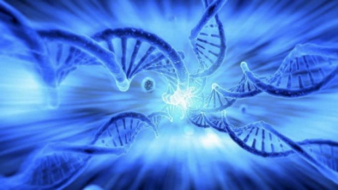 Consciousness and Our DNA