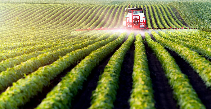 Conventional Food System Fails to Protect Vulnerable Infants, Children and Farmworkers