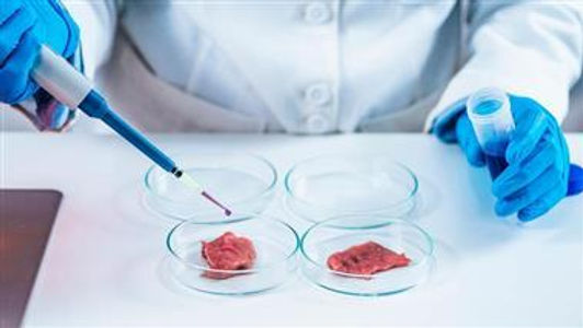 Lab-Grown Meat Is a Disaster in the Making
