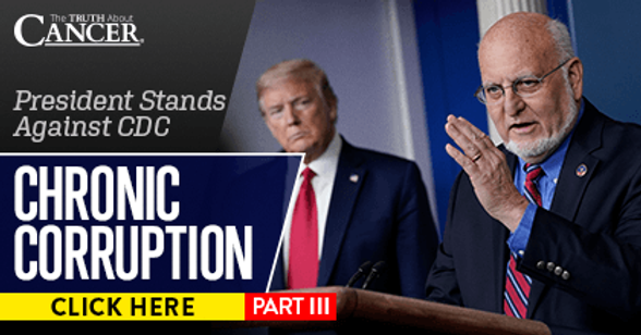 Chronic Corruption Part III: President Stands Against CDC