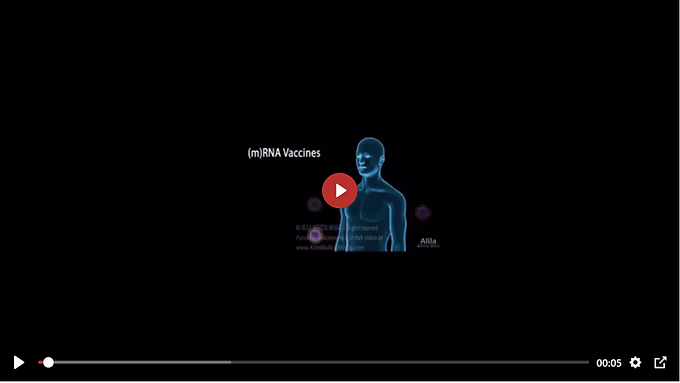 Visual Display of How mRNA Vaccine Affects Cells