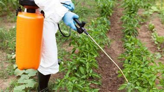 The Deadly Herbicide Report You Need to Read