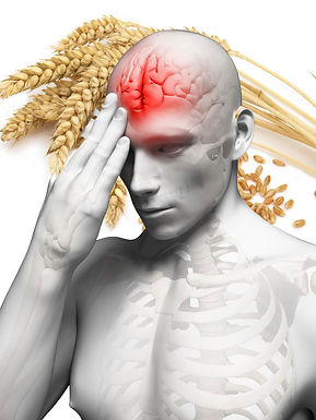 The Grain That May Damage The Human Brain