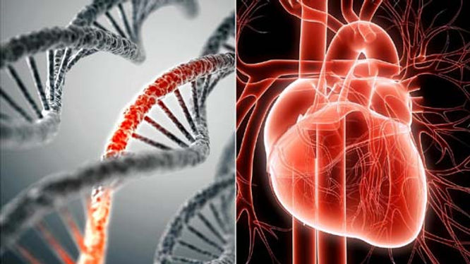 """Doctor: Heart Failure From MRNA Jabs """"Will Kill Most People"""""""