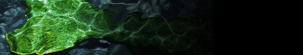 mermaidtailsbanner.jpg