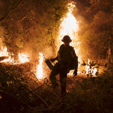California Wildfires: Mismanagement and irresponsibility leading to the worst wildfire season yet