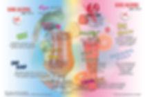 carte-vins-cocktails-2020-A4-2.jpg
