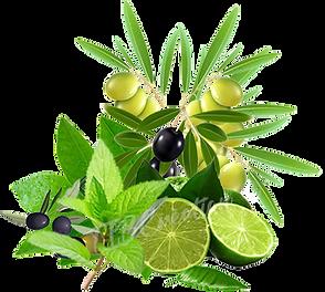 olives-citrons.png