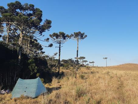 Transcânions (316km)